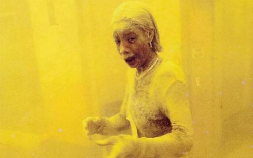 dust-lady-2685-1441932653.jpg