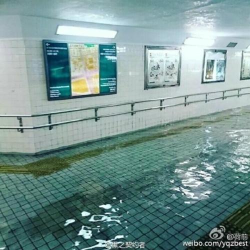 1442116691-japanese-flood-3-2l-2551-7679