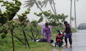 Hàng chục chuyến bay bị hủy do bão