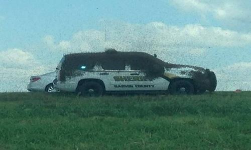 VNE-Sheriff-s-deputy-gets-trap-8419-6724