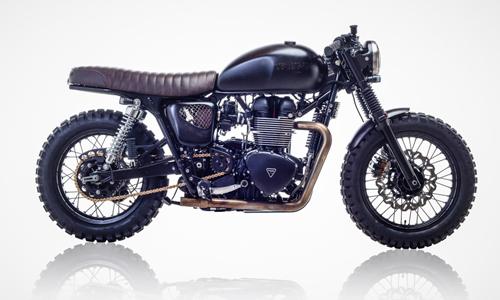 Triumph-T100-DB-2-4493-1444117381.jpg
