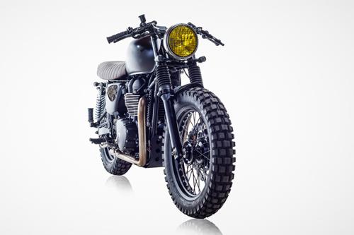Triumph-T100-DB-22-2385-1444117381.jpg