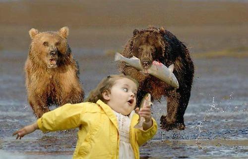 Cẩn thận đấy, tớ hết tuổi thay răng rồi!Bạn bè thì bạn bè, cướp đồ ăn là ta không tha đâu!Cẩn thận đấy, tớ hết tuổi thay răng rồi!