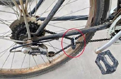 Đời sinh viên chỉ có chiếc xe đạp là tài sản quí nhất.