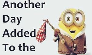 Những câu tiếng Anh hài hước theo phong cách Minions
