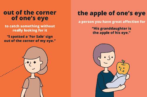 """Out of the corner of ones eye: liếc nhìn qua, nhìn thoáng qua Ví dụ: I spotted a """"For Sale"""" sign out of the corner of my eye. (Tôi có nhìn qua cái biển """"Giảm giá"""") The apple of ones eye - người mà ai đó rất yêu quý Ví dụ: His grandfather is the apple of his eye. (Ông là người mà tôi rất yêu quý)"""