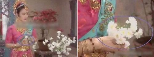 Vì quá ngưỡng mộ trước nhan sắc của Ngọc Thố, hoa cúc đã 'tự nhân giống cấp tốc' để lấy lòng người đẹp.