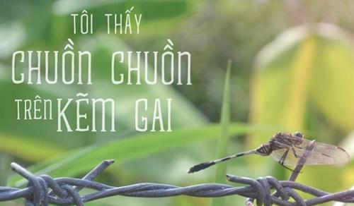 nhung-hang-muc-dinh-dam-nhat-cua-nam-2015-5