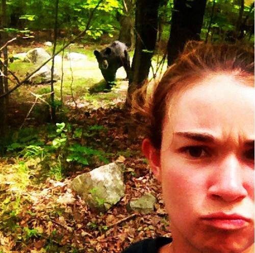 Có lẽ cư dân vùng này rất mong muốn có tấm ảnh chụp cùng với 'gấu' để khoe với bạn bè.