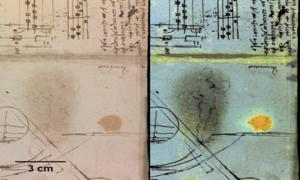 Hình người khỏa thân ẩn trong sổ tay của Leonardo da Vinci