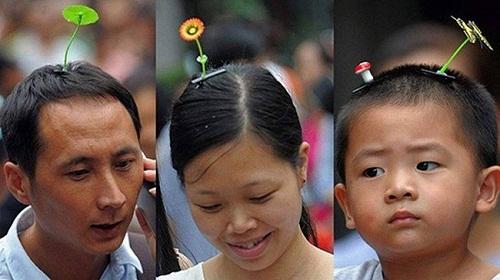 Trồng cây trên đầu trở thành trào lưu gây sốt của giới trẻ năm 2015.