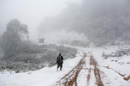 huyện Kỳ Sơn (Nghệ An) tuyết rơi kéo dài nhiều giờ, phủ trắng mái nhà, cây cối.