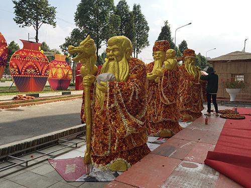duong-hoa-binh-duong-long-lay-sac-xuan-2