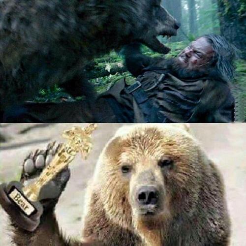 Trước thềm Oscar, nhiều người cho rằng người giành được giải thưởng nhất định là... chú gấu trong phim The Revenant.