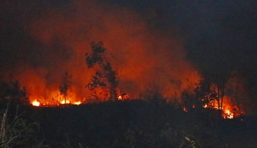 Đến 21h ngày 9/3, đám cháy vẫn chưa được khống chế. Ảnh: Nhật Hạ