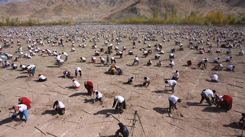 bhutan-trong-108000-cay-xanh-ky-niem-hoang-tu-be-day-thang-1