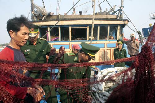 Lưới của ngư dân bị chúng cắt phát trước khi bỏ đi. Ảnh: C.T.V
