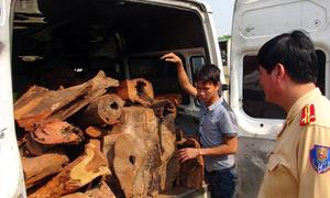 Ôtô khách không có ghế, đầy gỗ quý