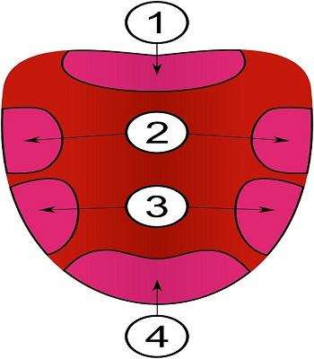 6-su-that-sai-lam-trong-sach-giao-khoa-pho-thong-3