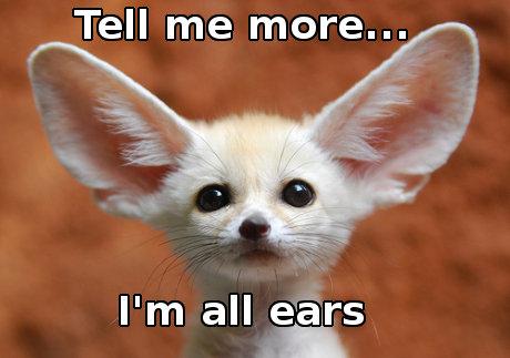 Be all ears: listen carefully or eagerly: dỏng tai lên nghe.  Ví dụ: If you think you can suggest a better alternative to spending that much money, I am all ears. (Nếu anh cho rằng có thể đưa ra một giải pháp khác hay hơn để sử dụng số tiền lớn như vậy thì giờ tôi dỏng tai lên nghe đây)