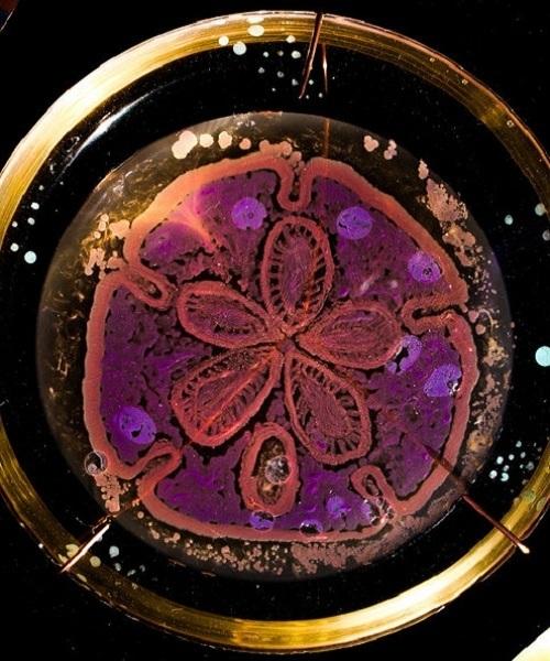 Những tác phẩm nghệ thuật vẽ bằng vi khuẩn