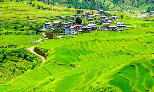 bai-phat-bieu-tieng-anh-lay-dong-cua-thu-tuong-bhutan-1