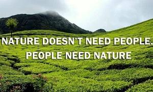 Loạt video tiếng Anh 'Thiên nhiên lên tiếng'
