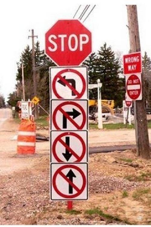 Dừng lại có nghĩa là không được rẽ trái, rẽ phải, chạy lui hay chạy tới.