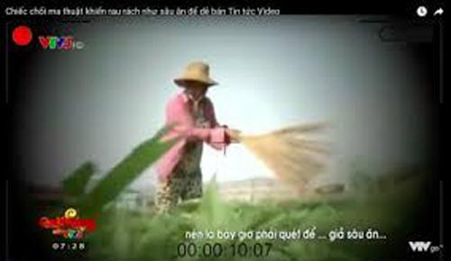 VTV xin lỗi vì sai sót trong phóng sự 'Cây chổi quét rau'