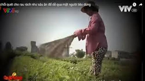 vtv-bi-phat-50-trieu-dong-va-phai-cai-chinh-vu-cay-choi-quet-rau