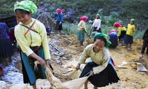Cuộc sống lao động của trẻ em vùng cao