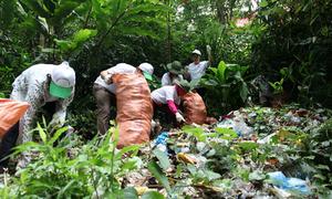 500 tình nguyện viên nhặt rác làm sạch thắng cảnh Tây Thiên