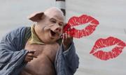 Nụ hôn ngọt ngào của Trư Bát Giới cho ta bắt được chữ gì?