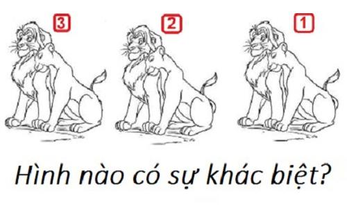 noi-nao-tren-trai-dat-chi-co-con-trai-khong-co-con-gai-1