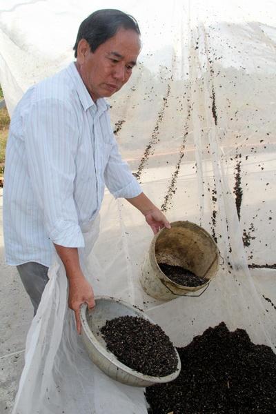 Phân dơi cho giá trị kinh tế rất cao với người nông dân. Ảnh: Phước Tuấn