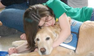 Đội chó an ủi nạn nhân vụ thảm sát hộp đêm Mỹ