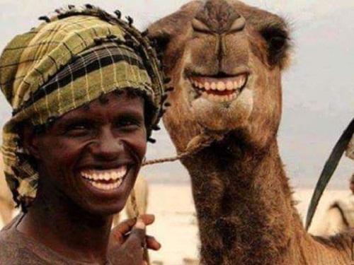 Nụ cười là ngôn ngữ chung của muôn loài.