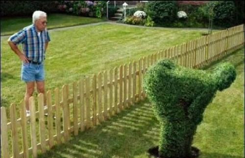 Cách thể hiện thái độ với hàng xóm.