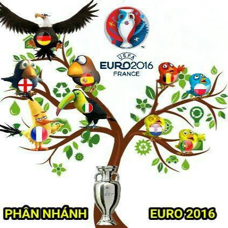 nhung-bai-tho-thu-hut-cua-doc-gia-vong-bang-euro-2016-5