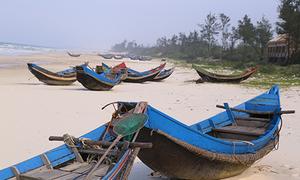 Ngư dân Quảng Bình kiến nghị được khám sức khỏe sau sự cố môi trường biển