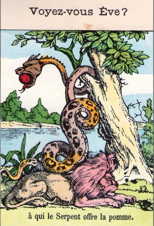 Vì sao Adam tìm khắp vườn địa đàng vẫn không thấy Eva? - Adam và Eva, vườn địa đàng