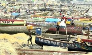 Tàu Trung Quốc tận diệt cá biển ở Guinea