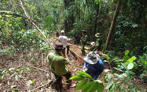 Cảnh sát vào rừng sâu khám nghiệm hiện trường. Ảnh: Hoài Thanh