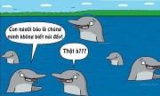 Nguyên nhân loài cá không thể nói chuyện