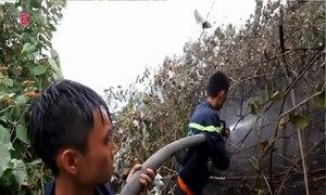 Rừng Hải Vân tan hoang sau 10 giờ hỏa hoạn