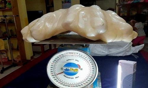 khoi-ngoc-trai-34-kg-trong-nha-ngu-dan-philippines