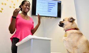 Sinh viên rèn luyện khả năng thuyết trình với chó