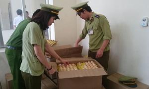 Tiêu hủy gần 5.000 trứng gà công nghiệp xuất xứ Trung Quốc