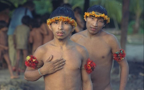 [Caption]Members of the Awa Cuajar tribe in the Amazon Basin, Brazil  Credit: Justin Sutcliffe