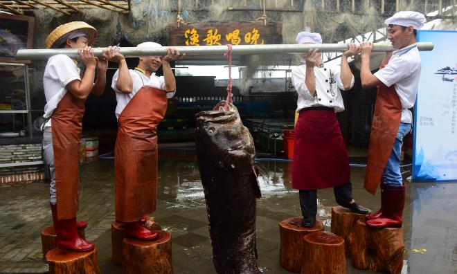 Ngư dân Trung Quốc bắt được cá mú nặng hơn hai tạ